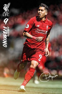 Liverpool FC Poster - Firmino 18/19 - New Liverpool Football poster SP1529