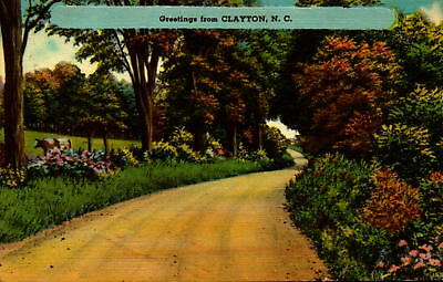 Postcard Greetings from Clayton North Carlonia  Linen