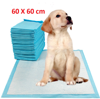 Large Puppy Training Trainer Train Pads Toilet Pee Wee Mats Dog Cat