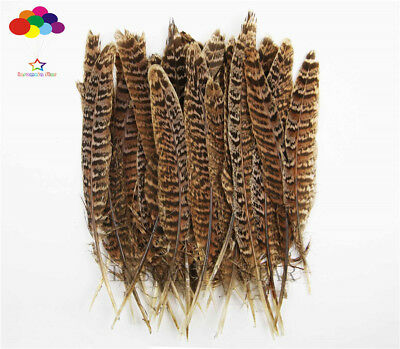 Diy Natural Pheasant Feather Brown Black Tail 4-6inch/10-15cm 10-100Pcs Carnival