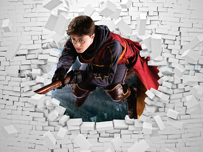 Harry Potter Quidditch Feature Wall Art Mural Wall Paper Self Adhesive Vinyl V1