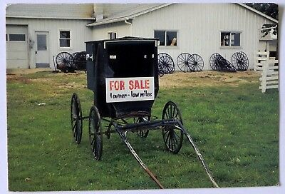 Amish Buggy for sale. RPPC  Postcard F788