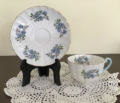 Shelley Blue Poppy Flowe With Gold Trim Teacup & Saucer