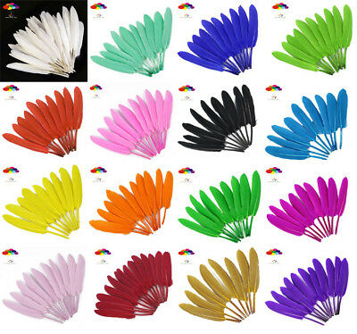 DIY 14 Colors Natural Goose Feather 4-6 Inch /10-15 Cm 100 Pcs Carnival Headress