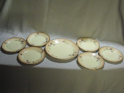 (7) Rare Antique Hand Painted Floral Gilt Edge Redfern And Drakeford Plates