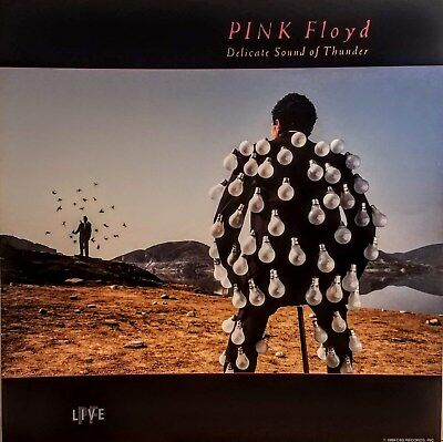 PINK FLOYD  'DELICATE SOUND OF THUNDER' Poster Flat Suitable for Framing  MINT!