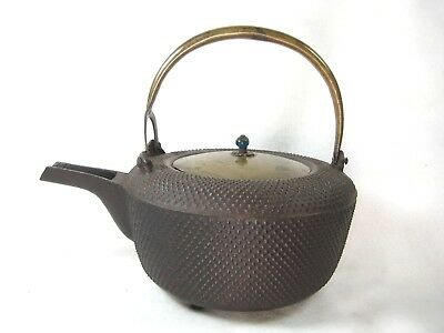 Antique Japanese Cast Iron Tea / Choshi Sake Pot Hail Pellet Tetsubin Glass Bud