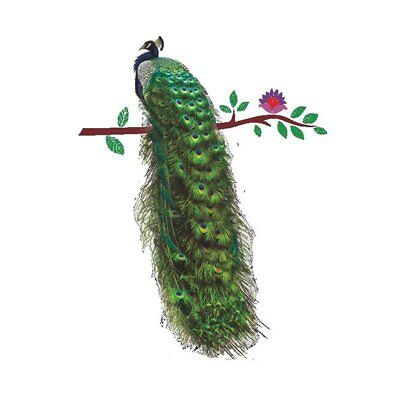 Beautiful Peacock Removable Mural Wall Sticker for Children Kids Bedroom De J4E7