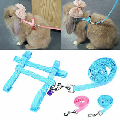 Traction Rabbit Guinea Pig Chinchilla Ferret Rope Protective Lead Leash Harness