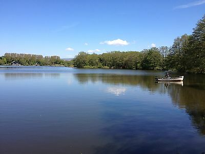 LOG CABIN  HOLIDAY FAMILY LAKESIDE LODGE SELF CATERING 5* WITH OWN BOAT bargain