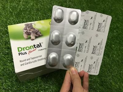 Drontal plus flavour for Dog  6 tablets+tracking number