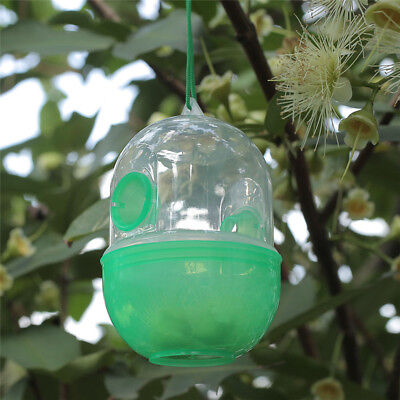Outdoor Hanging Bottle Pest Catcher Killer Insect Hornet Wasp Fly Trap Camp BN25