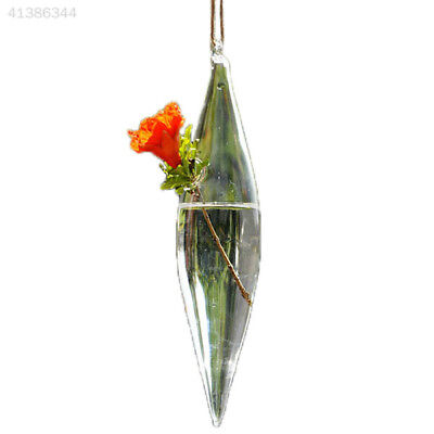 New Cute Clear Glass Olive Shape 1 Hole Flower Plant Stand Hanging Vase Hydropon