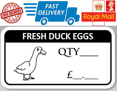 48 x Fresh Duck Egg Box Stickers Labels For Eggs