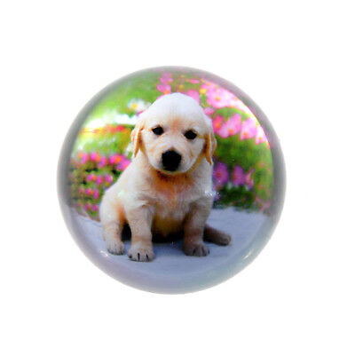 Clearance Sale Crystal Cute Dog Half Sphere Ball Paperweight Ornament 80mm