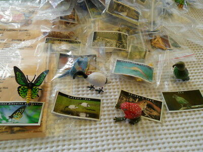 Yowies Rare Quality Set * Series 3 * Full Set All 50 + Intact Discription Papers