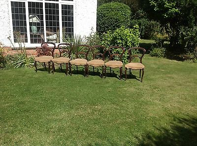 Set Six Victorian Rosewood Balloon Back Dining Chairs