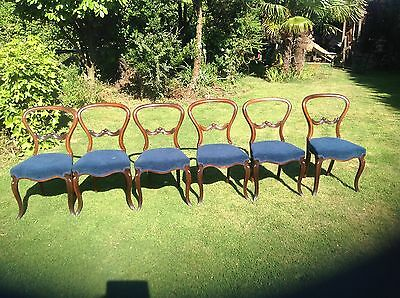 Set Six Rosewood Victorian Cabriole Leg Dining Chairs