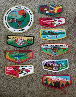 Lot of 10 Boy Scout Patches NEW