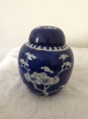 Antique Chinese blue & white porcelain prunus ginger jar with cover lid. Circles