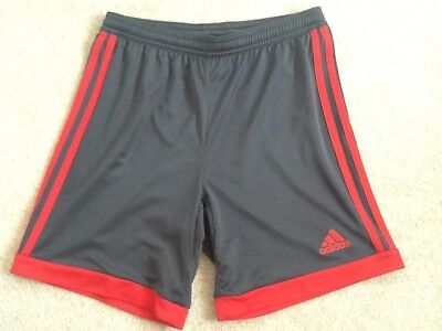 Boy's grey and red Adidas climacool shorts - age 11-12 years