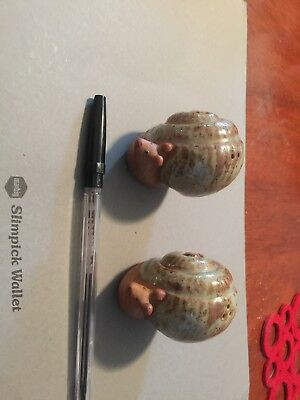 A stunning pair of snail salt and pepper shakers  , ceramic