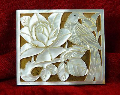 Carved Bird And Flower On Collectable Mother Of Pearl Shell Powder Compact