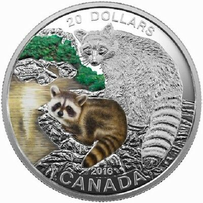 2016 $20 Canada - Baby Animals - Raccoon - 99.99% Silver Proof Coin - RCM