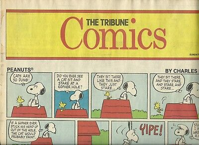 Oakland Tribune - 2 comic sections, 1987 and 1989 - Peanuts, Far Side, Annie