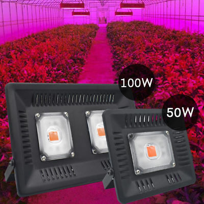 50/100W LED Grow Light Waterproof Full Spectrum Flood light For Indoor Veg Bloom