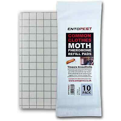 Entopest 10 x Tinea Common Clothes Moth Pheromone Killer Glue Board Catch Trap