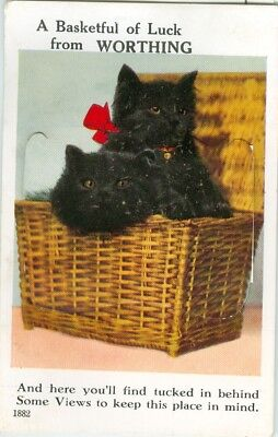 A Basketful of Luck from Worthing - novelty pullout - black cat