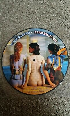 Rare Pink Floyd Picture Disc Rare Beauties .