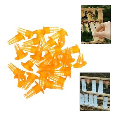 30pcs Bee Queen Cage Cell Cover Cap Protective Cellular Tool Beekeeping Supplies