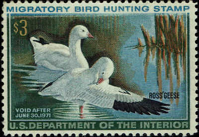 """Rw#37 1970 $3 """"Ross's Geese"""" Duck Stamp Mint-Og/H--Vf/Xf"""