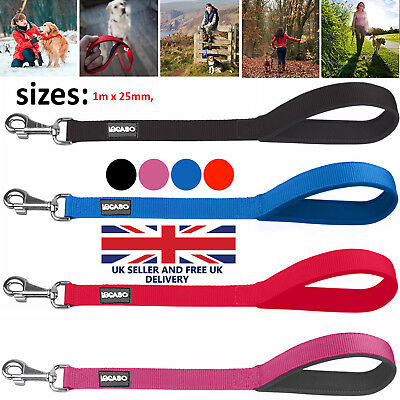 Nylon SLIP Rope Dog Training Walking Lead Padded Handle Black Blue Red & Pink