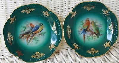 "Parrot Macaw Plates Pair Cico Bavaria Germany China Porcelain 7.5"" Dish Green"