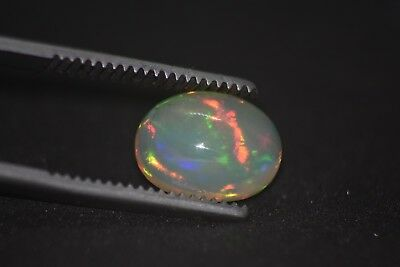Opale Welo 2,65 Ct Cabochon