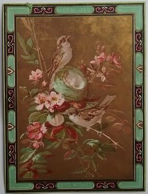 Lovely Victorian Art Nouveau Birthday Cardsting Birds In Blossom