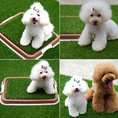 Puppy Pet Potty Training Pee  Indoor Toilet Dog Grass Pad Mat Large Turf Durable