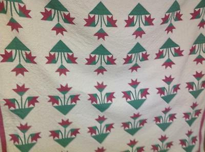 Antique Carolina Lily  Applique Completed Quilt Heavily Quilted Cotton Batting