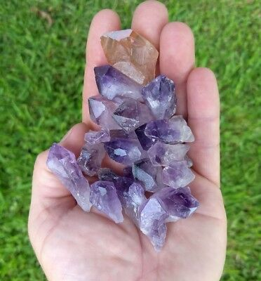 GemFarmer AMP: 1/4 Lb Lot of Amethyst Quartz Rough Crystal Points Chakra Brazil