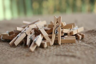 50 100 150 Wooden Craft Pegs Mini Small Tiny Wood Peg Natural Polaroid Photo