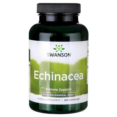 Swanson Premium Echinacea with Goldenseal Root Promote a Strong Immune System