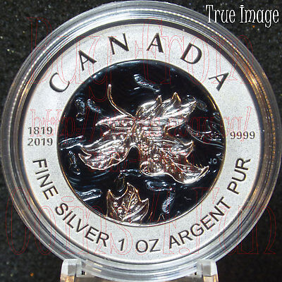 1819-2019 Bicentennial Celebration Maple Leaf Pure Silver Fractional 5-Coin Set