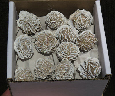 1LB Natural Desert Rose Gypsum Crystal Polished Gem