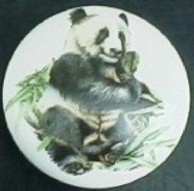 Ceramic knob panda In bamboo field Wildlife