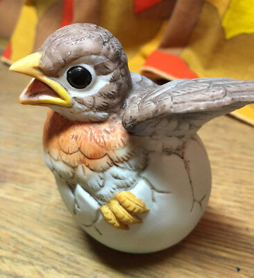 Adorable Andrea by Sadek Porcelain Robin Baby Egg Hatching Bird Figurine WOW!