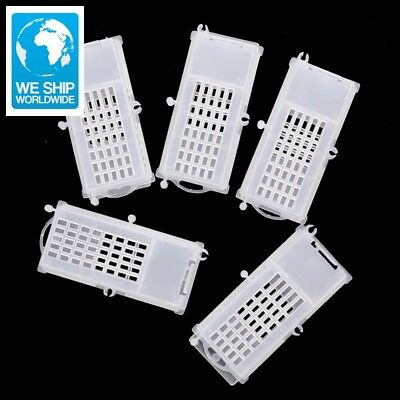 50 Pcs Beekeeping Tools Bee transport cages Insect Equipment Queen house Beehive