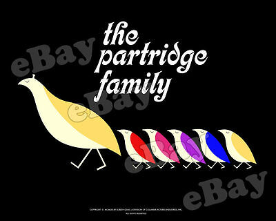 EXTRA LARGE! THE PARTRIDGE FAMILY Poster Print #1 SHIRLEY JONES David Cassidy